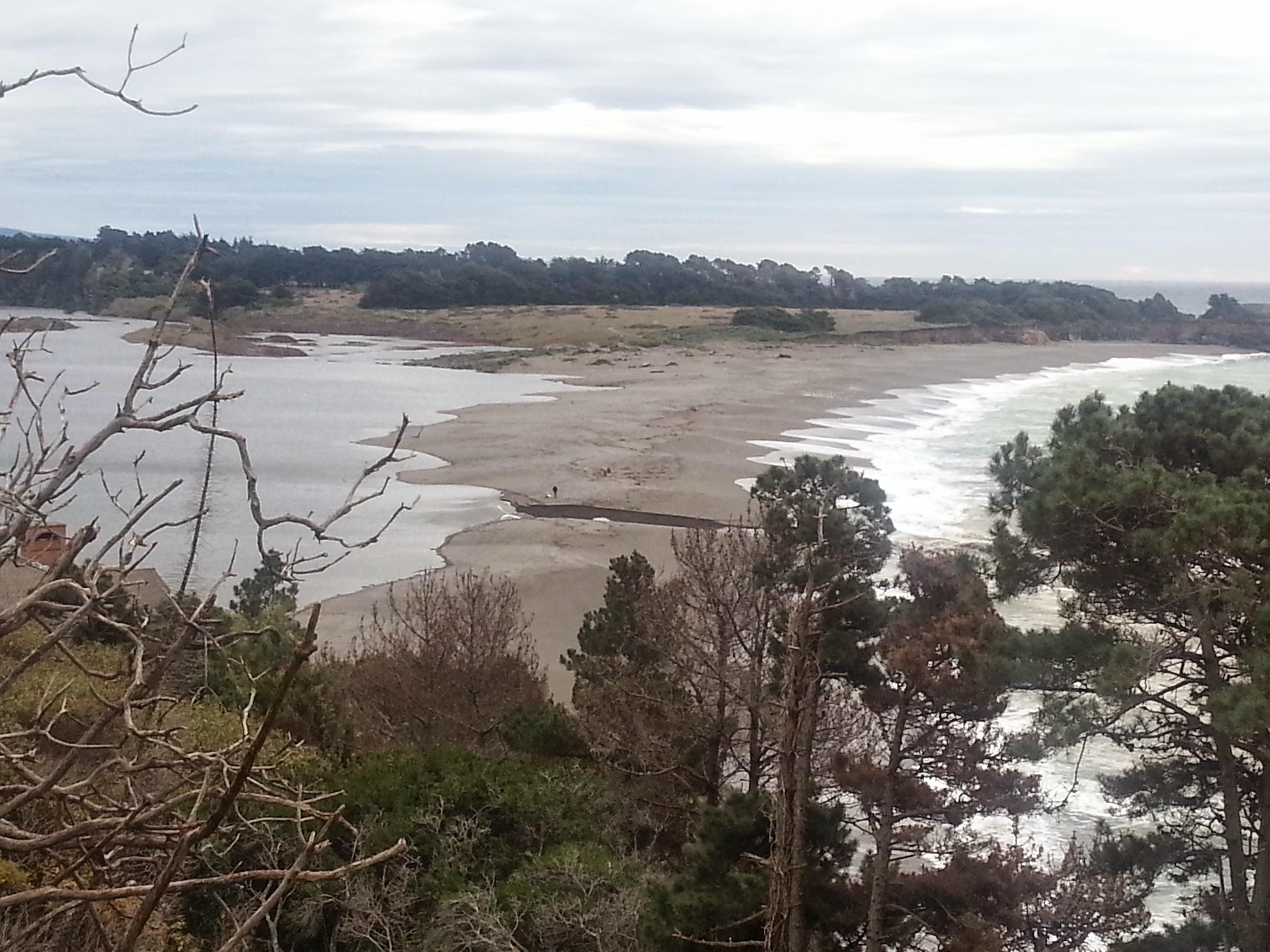 The Gualala River estuary sand bar broke open on 11/30/2014 for the first time during this 'water year.'